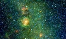 Vinterstjerner