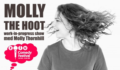 Molly The Hoot – work in progress