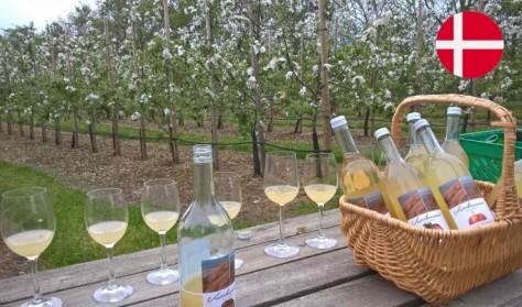 Rundvisning og smagning i Rosenhaven og  Æbleplantagen (DANSK)