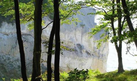 Forårsstillevandring 3 dage på Camønoen