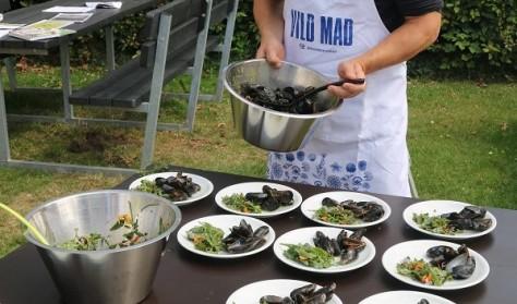"""""""Vild-Mad"""" med Øresundsakvariet – Strandens spiselige urter"""