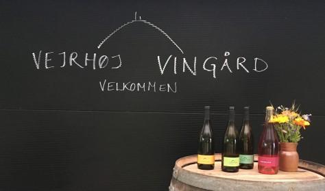 Åben vingård - Kristi Himmelfart