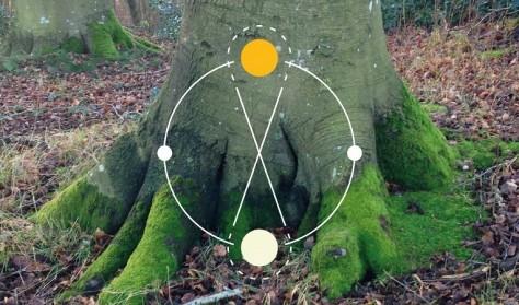 Træer, næring og 'hjemmesteder'