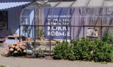 Sommer-salon på det kulinariske landsted Mariuzlund