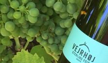 Vin i Geoparken