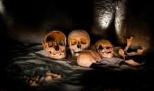Døden i Halskov Vænge - omvisning