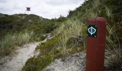 Basiskursus 2: Færdsel i og kendskab til Nationalpark Thy - afholdes online