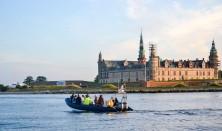 Marsvinesafari med Øresundsakvariet 2021 - Dagtur