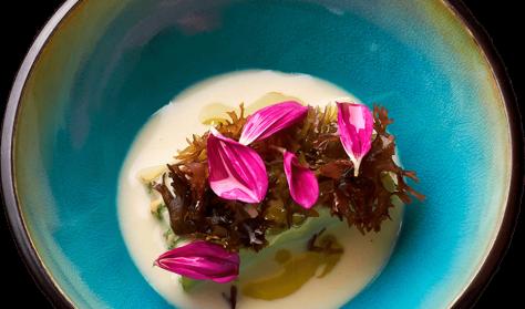 Tangsafari og gourmet på restaurant MOTA (ATOM) (Anneberg - Nykøbing Sj.)