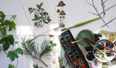Workshop i plantetegning v. botanisk tegner Kirsten Lehrmann Madsen